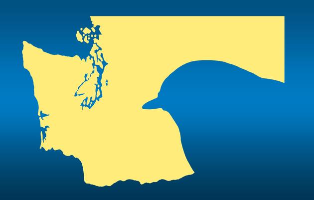 The Great Washington State Birding Trail