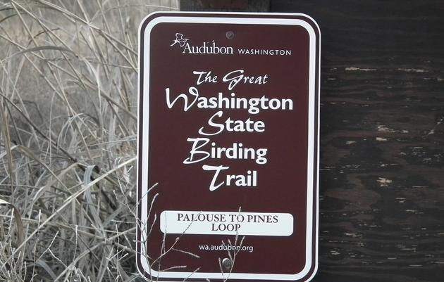 What Is a Birding Trail?