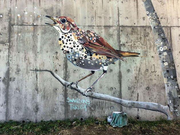 The Audubon Mural Project Lands in the Pacific Northwest